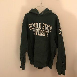Grön vintage champion collage hoodie! Säljer den pga använder den inte längre.
