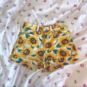 dösöta shorts från american apparell, endast använda ett par gånger eftersom de sorgligt nog är för små för mig. tror de var märkta som storlek 30, men passar nog en 29. köparen står för frakt!♥️