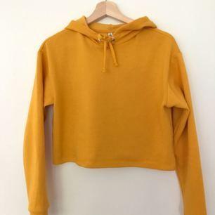 Croppad gul hoodie köpt från annan användare. Har aldrig kommit till användning. Kan mötas i Borås eller frakta.