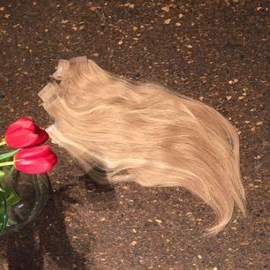 Rapunzel of Sweden bästsäljande tejp hår. Användt ett tillfälle och urtaget försiktigt så det är lätt att sätta i igen och i fin kvalité #p14/60 och 14. Längd 50cm som är uppklippt något. Ca 30slingor. Nypris 3870kr