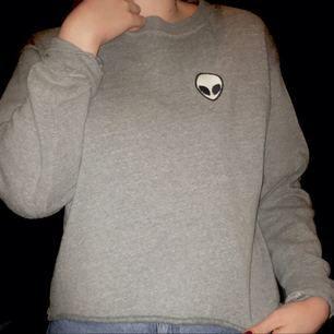 En populär ailentröja i grått, den är knappt använd så den är i väldigt gott skick och väldig väldigt len. Den passar storlek XS-L beroende på passform