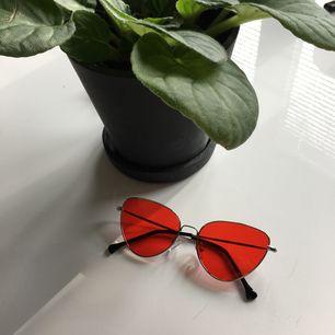Super coola glasögon med rött glas