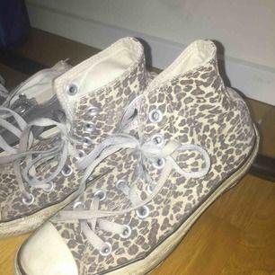 Converse skor men leopard print storlek 36 knappt använda