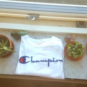 Endast testad champion t-shirt. Finns i Skåne annars tillkommer frakt 🦋