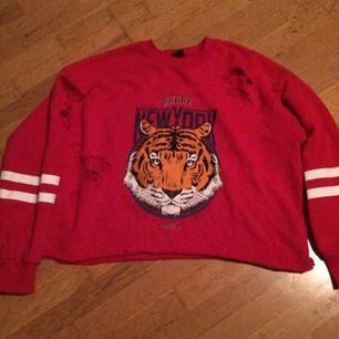Den berömda tröjan från Gina med hål/slitningar samt tigern fram. Storlek S vilket är lite för litet :( dessutom