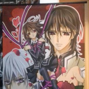 Vampire knight / anime tyg flagga / tavla.  Krokar fattas så hängs upp med snöre. Går att byta ut.