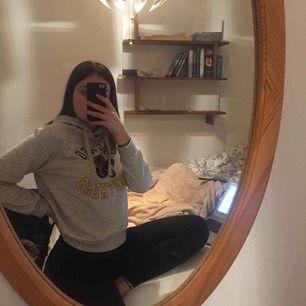 jätte mysig grå chicago panthers hoodie i storlek M