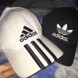 Två stycken kepsar från Adidas!! Säljer båda för 100 eller en för 60🌟💫Köparen står för frakt