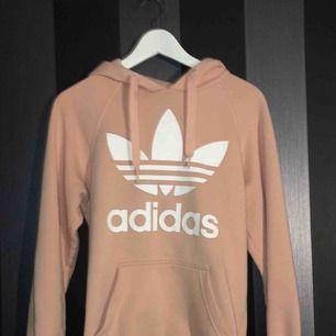 En rosa adidas hoodie i herrmodell storlek XS, passar S. Nypris: 700kr