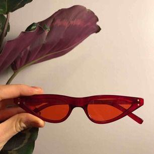 Röda cateyebrillor. ❤️