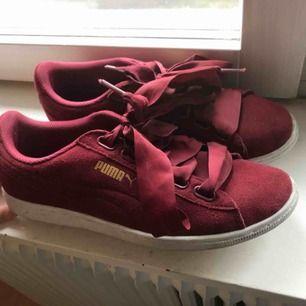 Rödaktiga puma skor med breda snören (lätt att byta om så är fallet). Nypris: 900 kr.