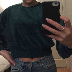 Ascool croppad sweatshirt från bikbok i velvet!💚