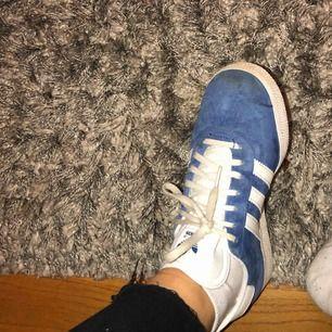 Adidas gazelle i blå färg.