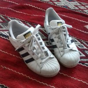 Adidas Superstar i stl 38 2/3, passar bra på mig som vanligtvis har stl 38. Sparsamt använda och i fint skick. Frakt 63 kr.