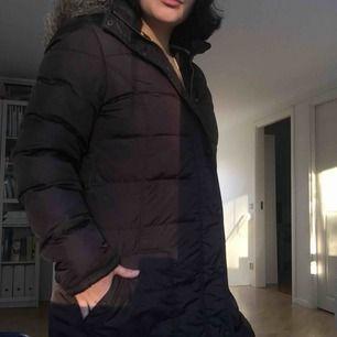 Brun dunjacka märkt XL men väldigt liten i strl. Säljer då jag inte längre använder dun🕊