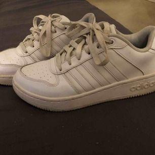 Jätte sköna Adidas skor! Väldigt lite använda.  Lite slitet på ena, men syns knappt när du har dom på dig!