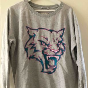 En grå tröja med blå rosa tiger på magen. Använd fåtal gånger.