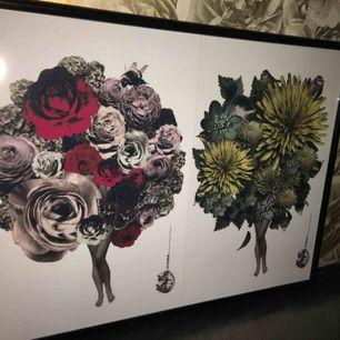 Tavlor från Lisa Bengtsson i massa olika. Tygbitar Coco tiger budour, aprikos grå rosa
