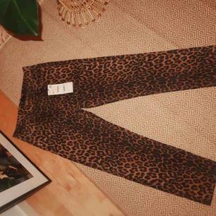 HELT NYA! PRISLAPP KVAR!  ASSNYGGA leopard straight leg jeans! Förkrossad över att dem va för små haha.. så snygga:(   Är vanligtvis en storlek 38-40 så dessa passad nog 36-38!  Köparen står för frakt! Kan möjligtvis mötas i Stockholm!