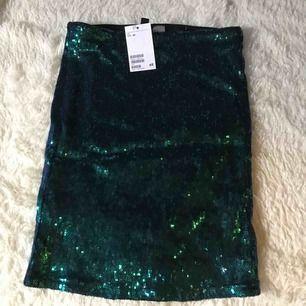 2 glittriga kjolar från H&m (aldrig använda) Frakten är inräknat i priset, båda för 100:- 🦋