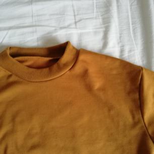 Croppad brunorange tröja med lång ärm! Superfin färg, lite kallare än på bilden, kan mötas upp i Stockholm eller frakta! Pris kan diskuteras :)