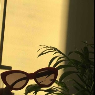 Jätte snygga röda solglasögon från h&m, perfekta till soliga dager eller om man bara vill se lite extra trendig ut. Frakten är inkl. i priset <3 ha en bra dag!