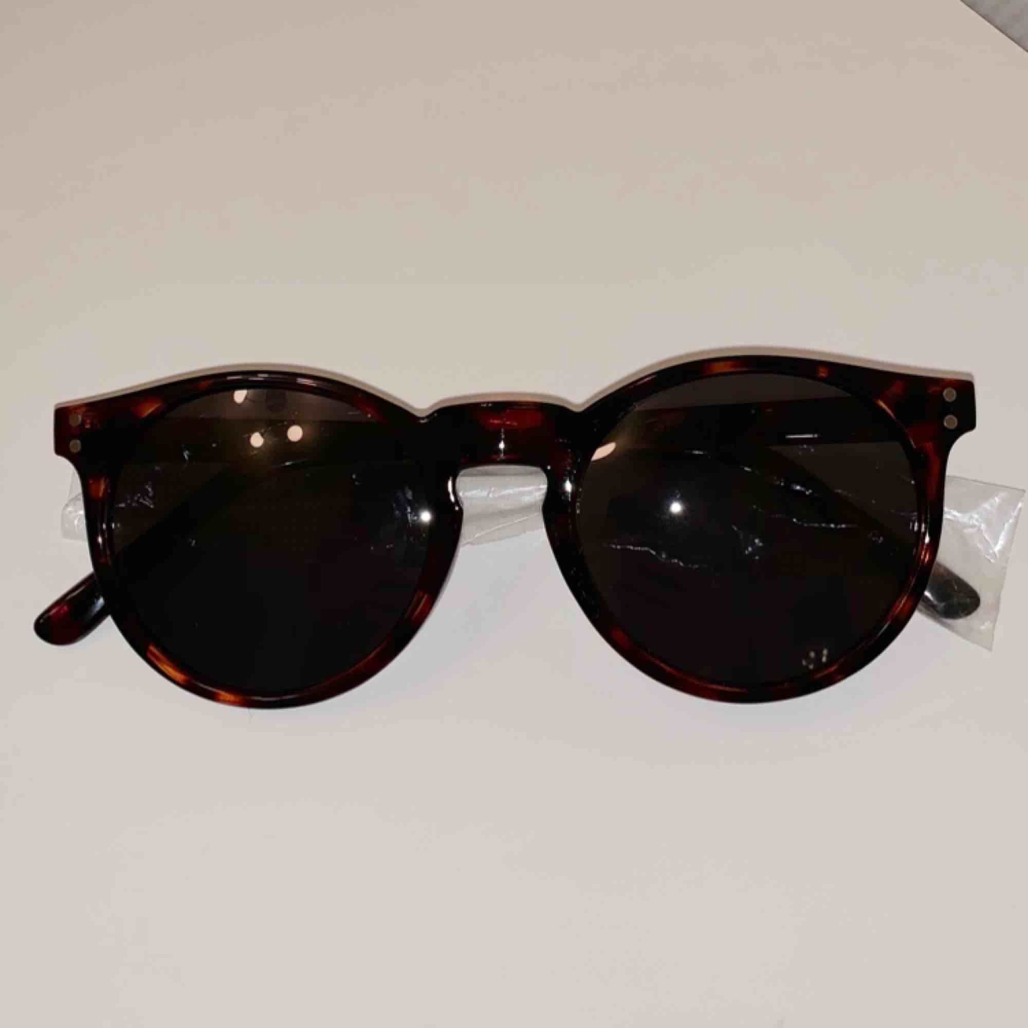 Säljer ett par oanvända solglasögon från märket Pineapple. Nypris: 349:- . Accessoarer.