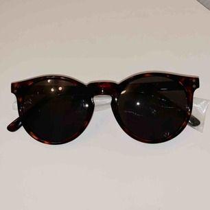 Säljer ett par oanvända solglasögon från märket Pineapple. Nypris: 349:-