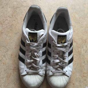Adidas superstar i storlek 42 (Köparen står för frakten)
