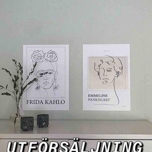 Vi är ett UF-företag som säljer posters med syfte att sprida kunskap om kvinnors historier. Nu ska vi avveckla och därför försöka sälja slut. Alla är skapade av unga konstnärer från Umeå och på baksidan står det en faktatext om kvinnan. Frakt 49kr.