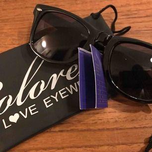 """Nya solglasögon från Colorez i """"Wayfarer"""" modell, skickar med ett fodral från Colorez. Betalning sker enklast med Swish, skicka ett pm! 10:- plus frakt 9:- = 19:- totalt"""