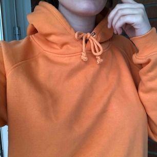 Orange alpha hoodie från bik bok. andra bilden gör färgen mest rättvis. Som ny!