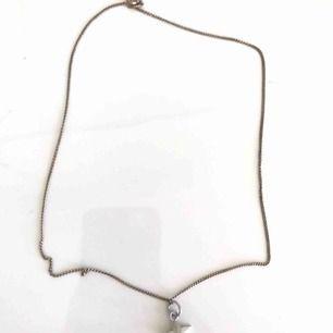 Halsband med silverstjärnebelock på. Skriv privat för mer info!