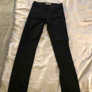 Sprillans nya Levis jeans, tyvärr i fel storlek för mig. Aldrig använda. Köparen står för frakt :)