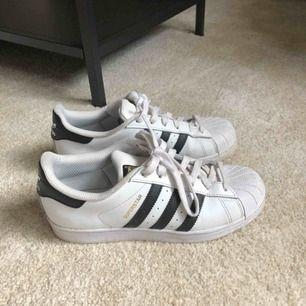 Adidas superstar, fint skick