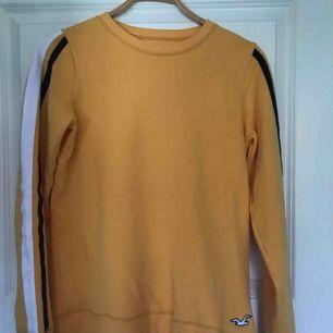 Gul tröja från hollister, köpte för 1 år sen använt gång. Supermjuk flis inuti