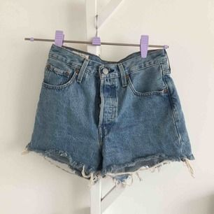 Levi's shorts 501!