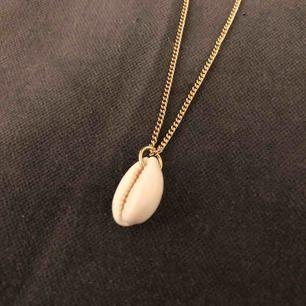 Fint halsband med snäckskal, guldig reglerbar kedja! Priset är inklusive frakt