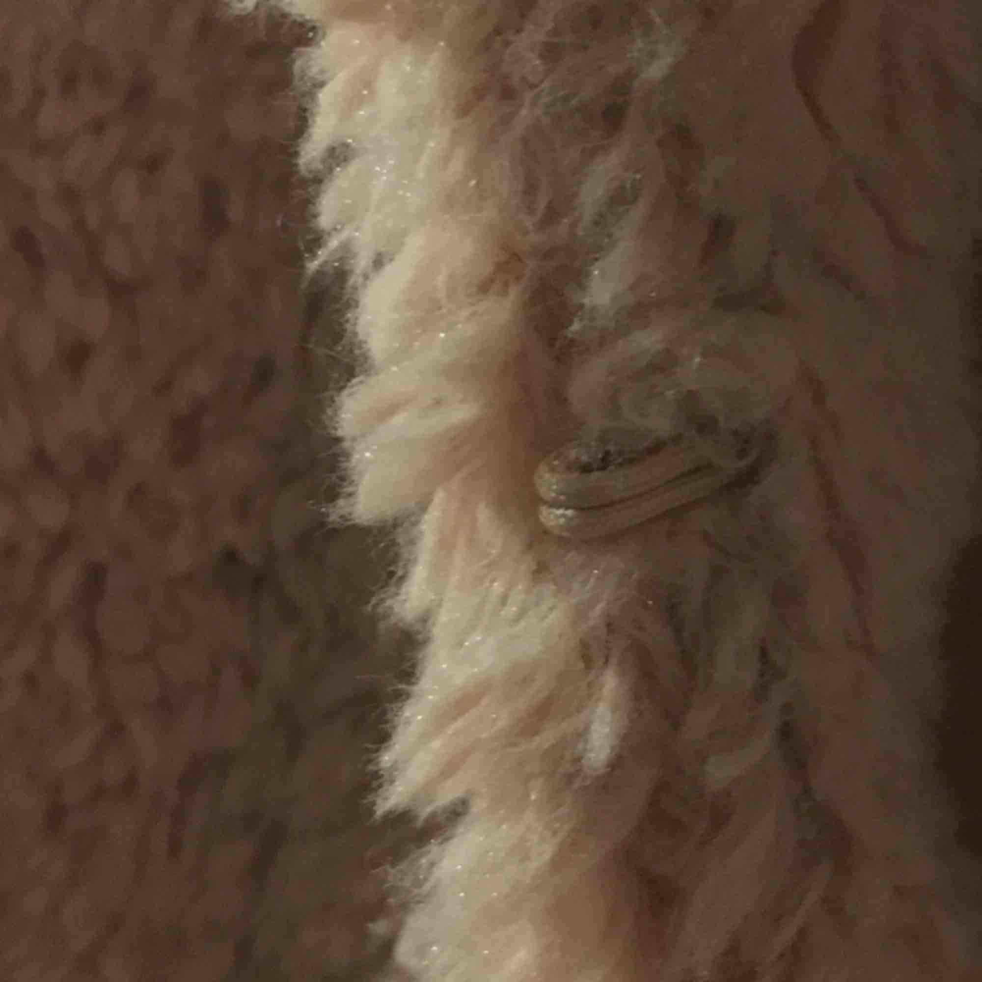 Jättefin rosa fluffig vårjacka/kofta! Står storlek 42 men sitter fint på mig som är en storlek small, funkar nog på en medium också! Endast använd nån gång, frakten är inkluderad!. Jackor.