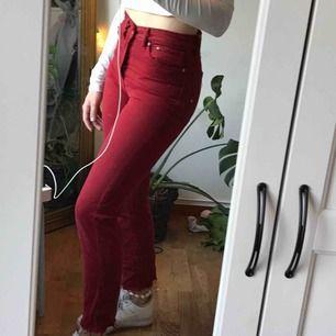 röda jeans från h&m, små i storleken. Har även klippt av de nere vid anklarna och även fransat de lite.