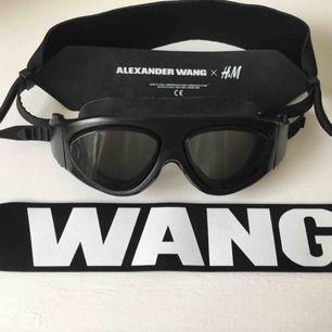 Alexander Wang X H&M Skidglasögon helt oanvända  250kr + frakt