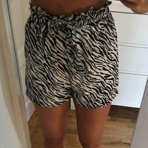 Ett bar härliga shorts i zebra mönster, helt nya!