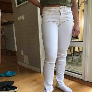 Säljer ett par jätte fina men som är för små för mig tiger of sweden jeans! Min kompis på bilden är 1.58cm. Dom har bara använts 1 gång och är i jätte fint skick. Kan mötas upp i Karlstad annars står köparen för frakt:)