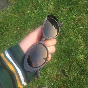 Coola brills 🦉