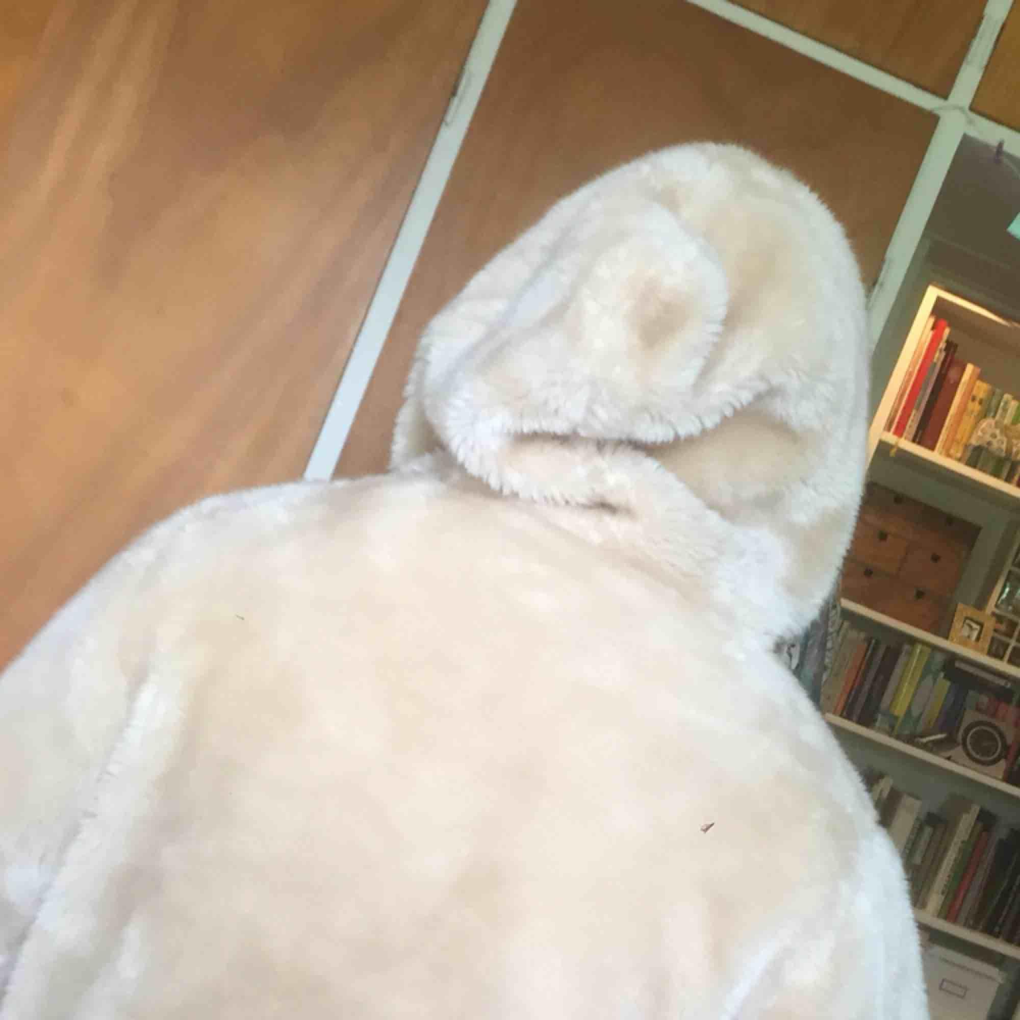En vår/höst/vinterjacka köpt på humana i fakefur! Går att lagra så att den håller värme och är praktisk. Eller bara använda som statementpiece! Har två fickor och en gosig och skön huva . Jackor.