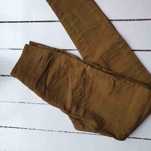 Senapsgula leggings med dragkedja i bak. Märke: Pieces Storlek: 36 Material: okänt. Pris: 200 kronor inkl.