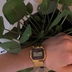 Gold Casio watch / Guld Casio digitalklocka