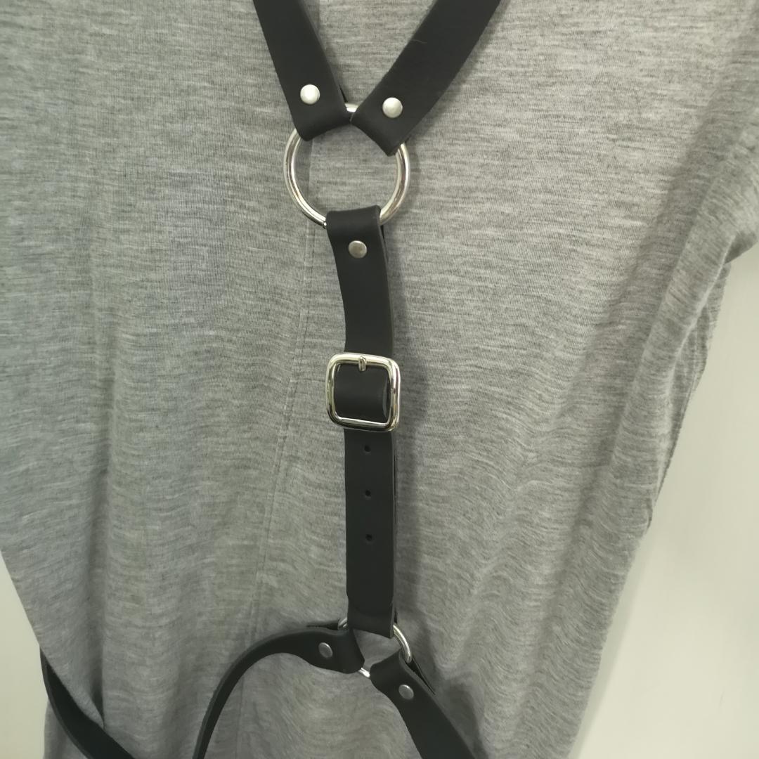 Oanvänd harness. Skitsnygg men aldrig kommit till användning. Spännen finns både runt Midja och i rygg, för att anpassa storleken. . Accessoarer.