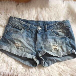 Fina shorts  Stl M (40)