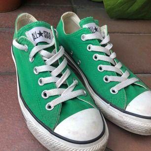 Gröna låga converse, köpta second hand för 300. Storlek 37 men passar även mig som vanligtvis har 38